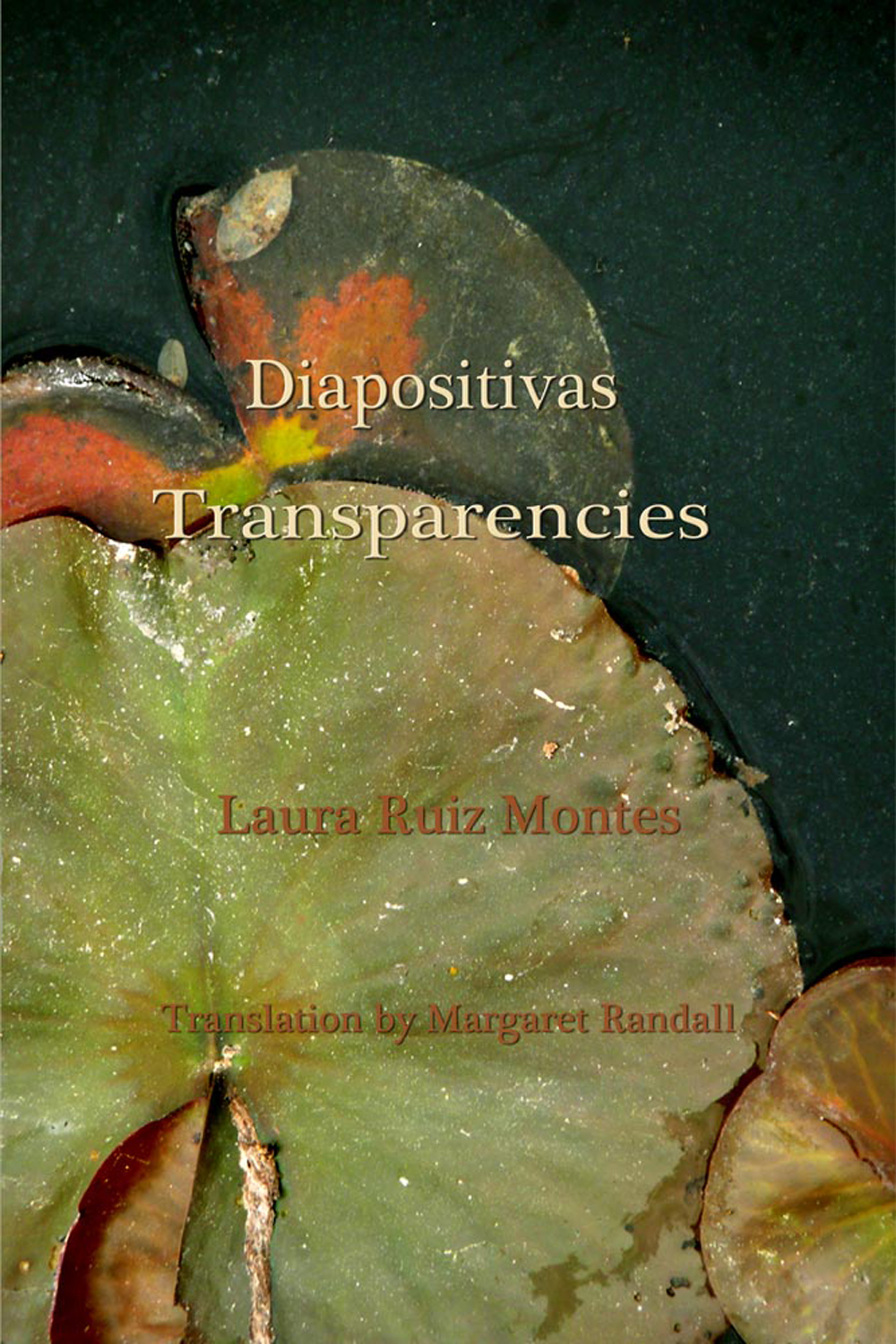 Diapositivas Transparencias Laura Ruiz Montes